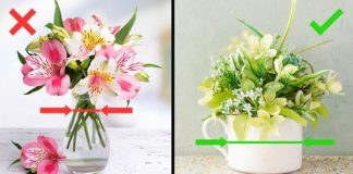 свежесть цветов в вазе на долго