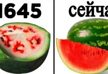 продукты которые изменились