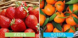 Когда лучше покупать фрукты