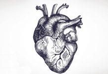 сердце работает не так